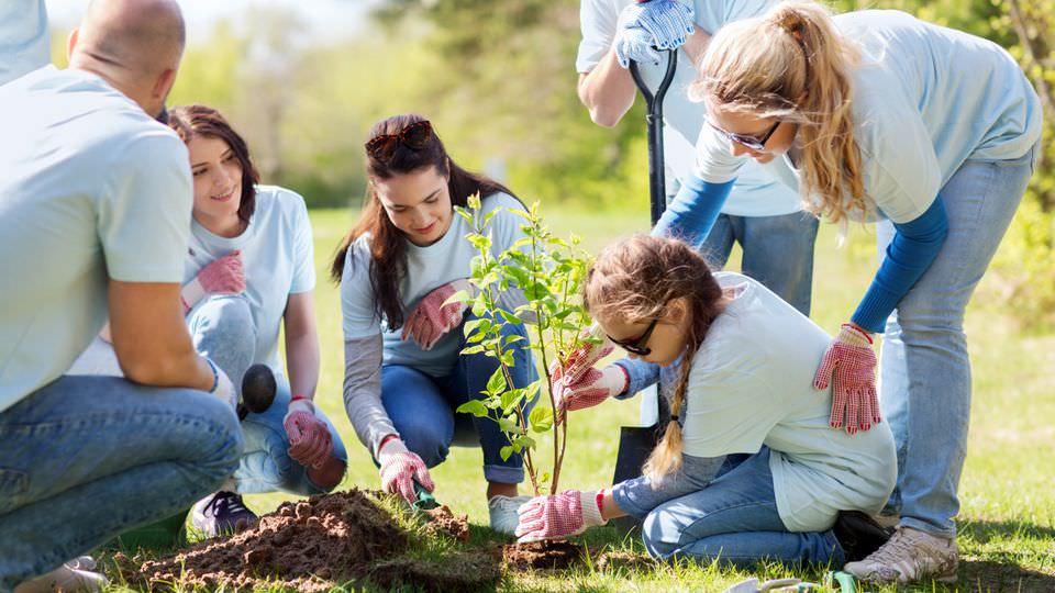 how to get volunteer work